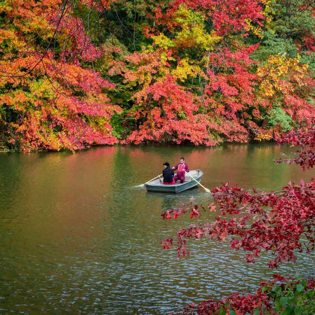 Custom-Travel-Planner-Network-10-SM-New-York-Central-Park-Foliage