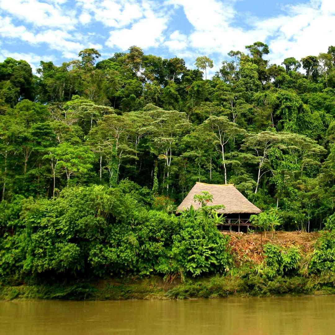Custom-Travel-Planner-Network-4-SM-Ecuador-Amazon