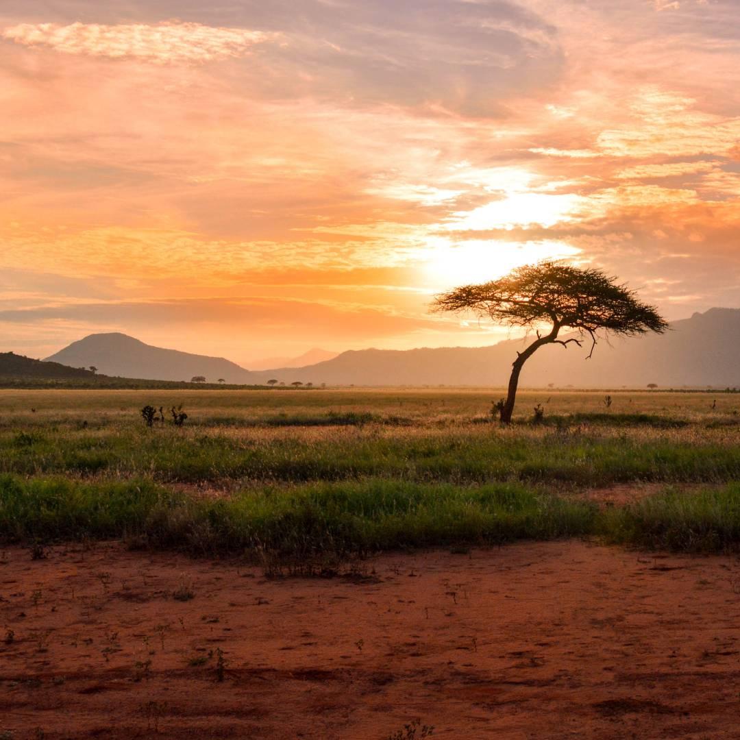 Custom-Travel-Planner-Network-7-Kenya-Tsavo-East-National-Park