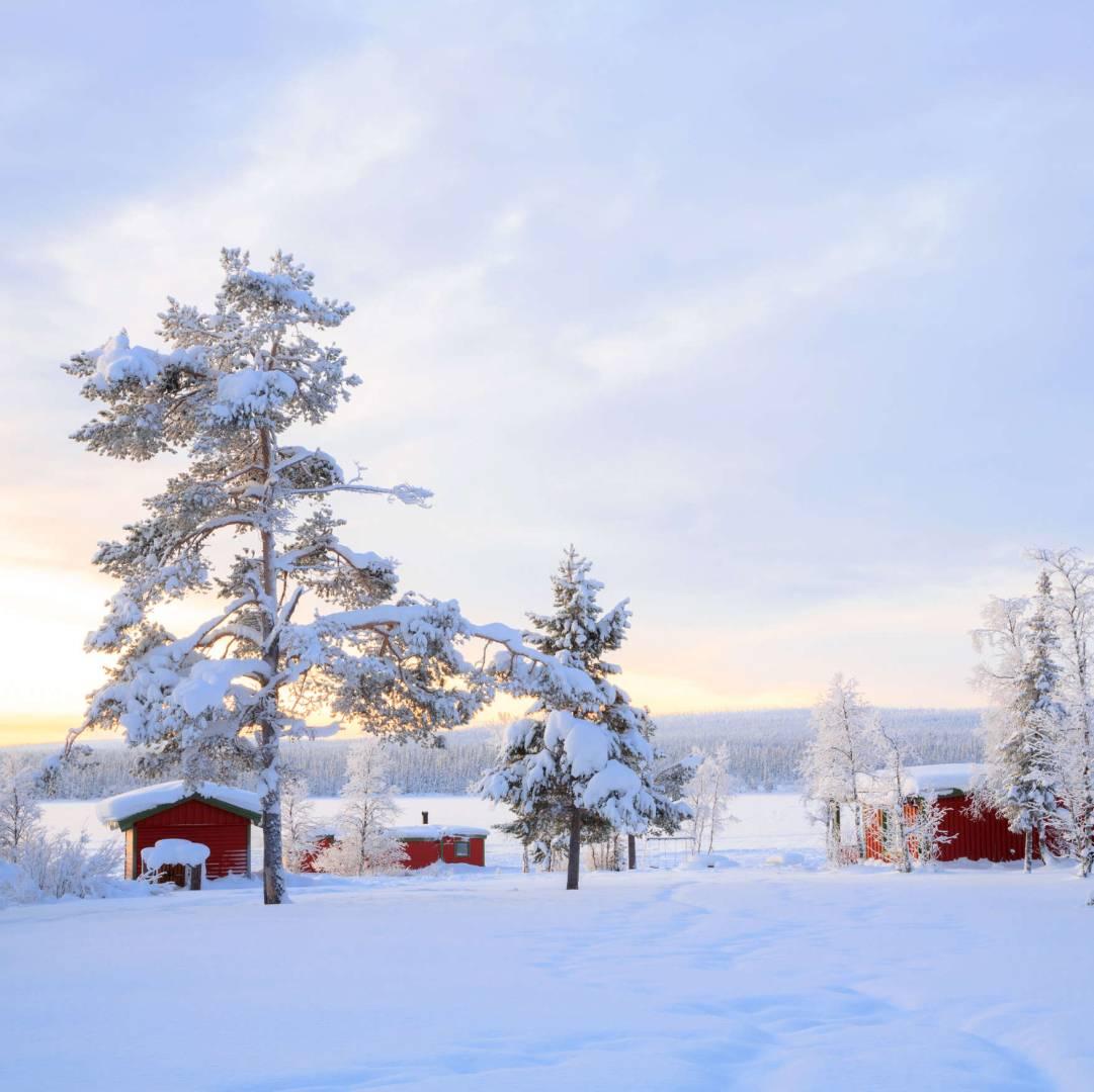 Custom-Travel-Planner-Network-2-Sweden-Lapland