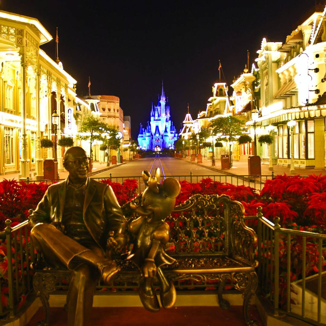Custom-Travel-Planner-Network-1-Disney-Magic-Kingdom