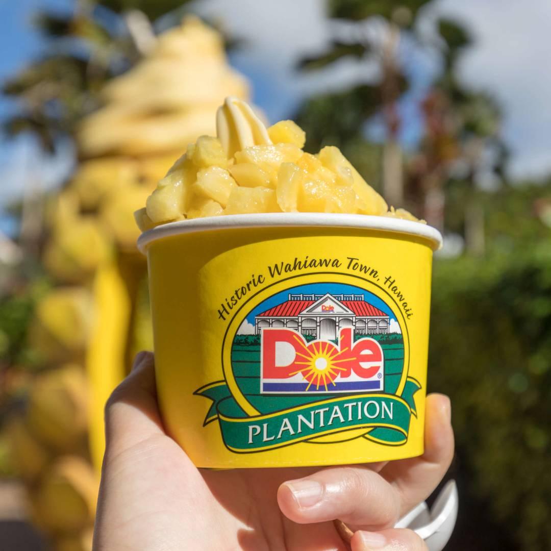 Custom-Travel-Planner-Network-5-SM-Hawaii-Pineapple-Farm-Ice-Cream