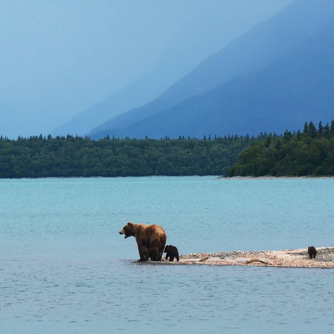 Custom-Travel-Planner-Network-8-SM-Alaska-Naknek-Lake