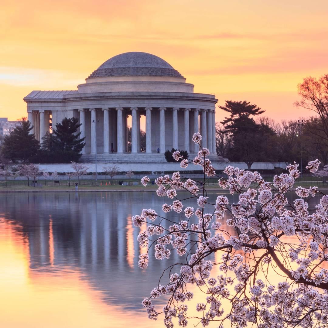 Custom-Travel-Planner-Network-4-Washington-DC-Jefferson-Cherry-Blossoms