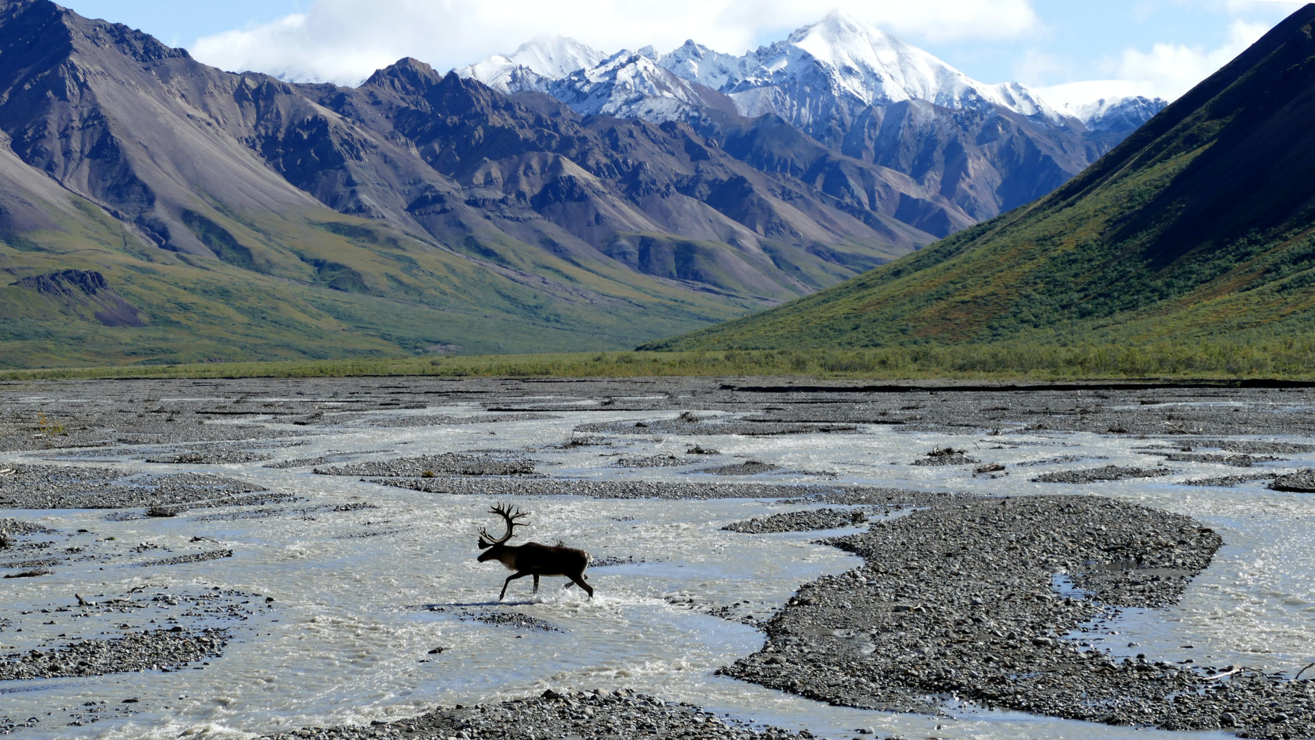 Custom Travel Planner Network-Alaska-Denali National Park