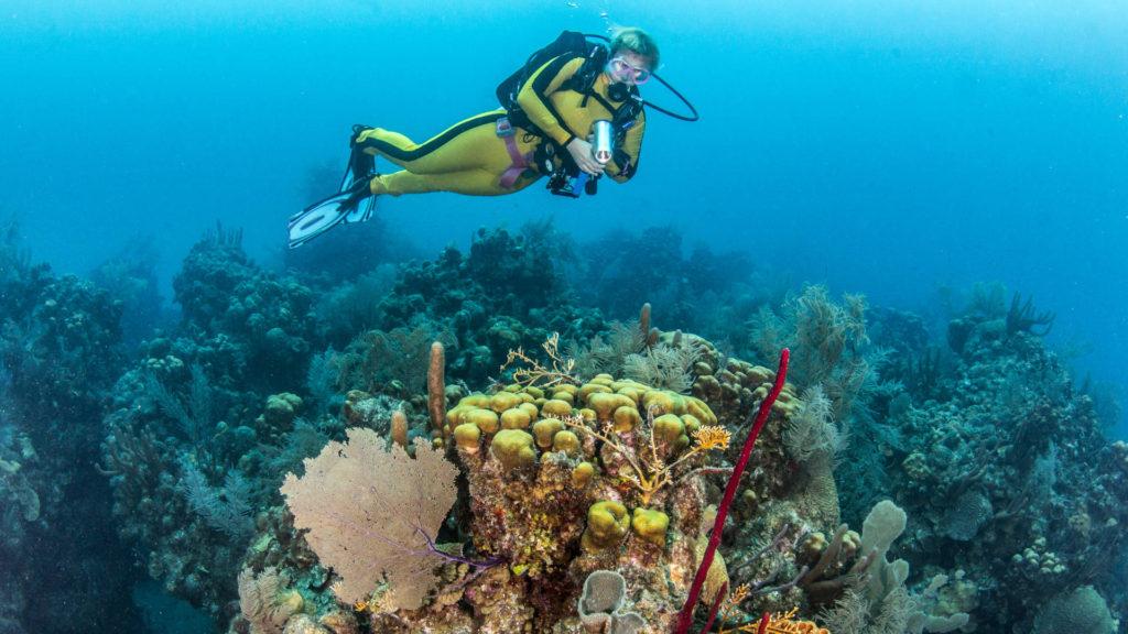 Custom Travel Planner Network-Belize-Diving Blue Hole