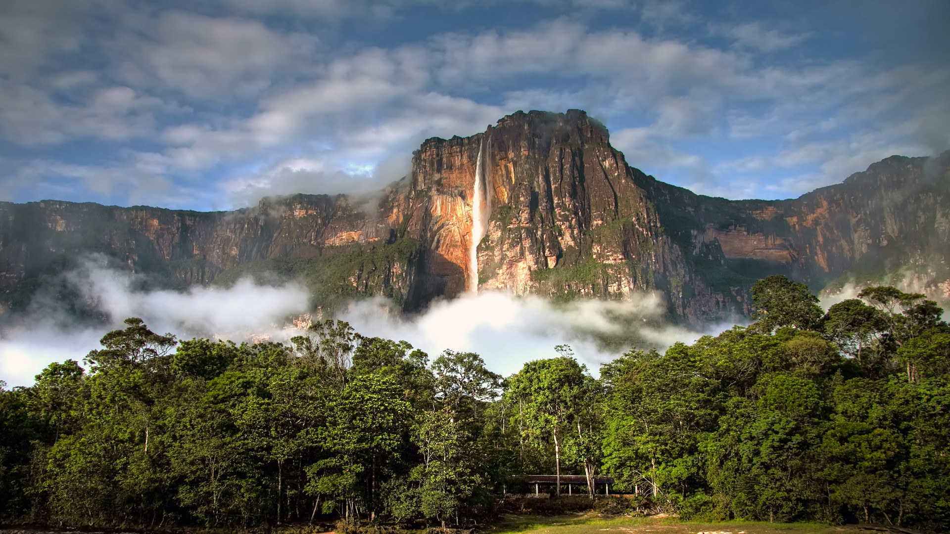 Custom Travel Planner Network-Venezuela-Angel Falls