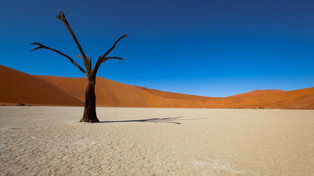 Custom Travel Planner Network-Namibia-Deadvlei Hiking Trail