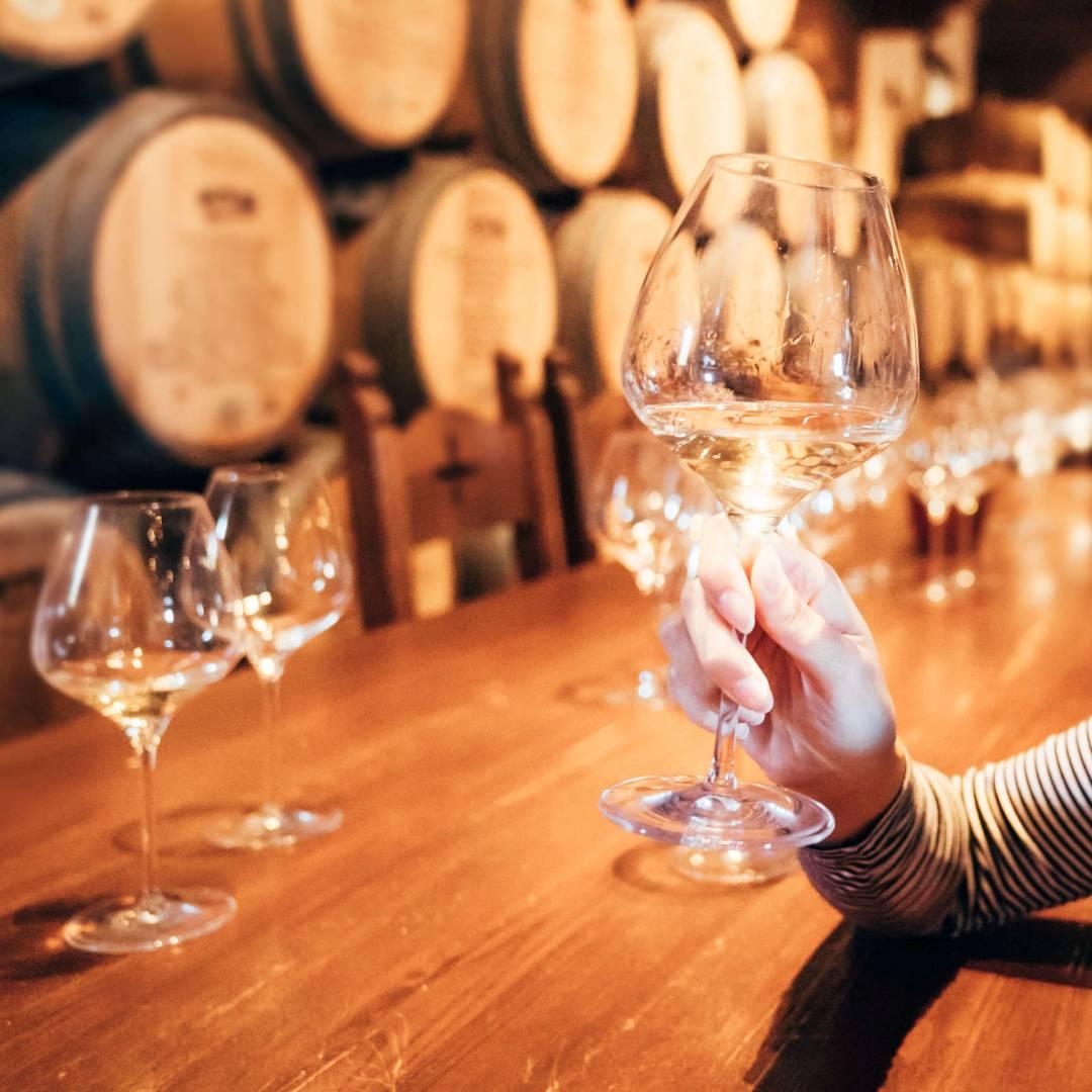 Custom-Travel-Planner-Network-3-SM-USA-Napa-Wine-Tasting