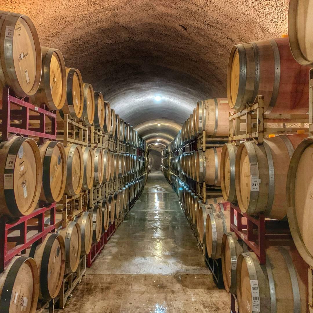 Custom-Travel-Planner-Network-5-Napa-Wine-Cellar