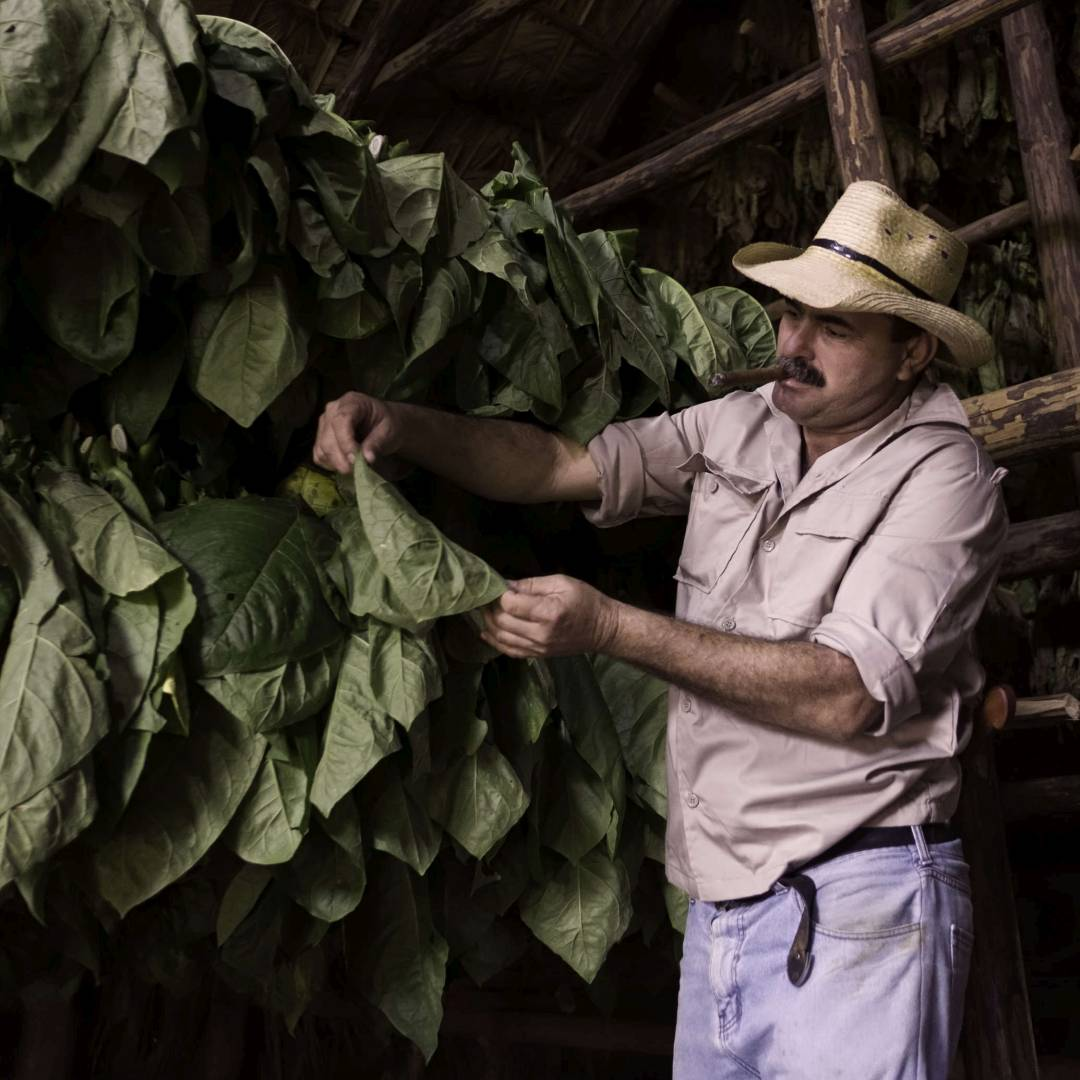 Custom-Travel-Planner-Network-1-Cuba-Tobacco-Farmer-