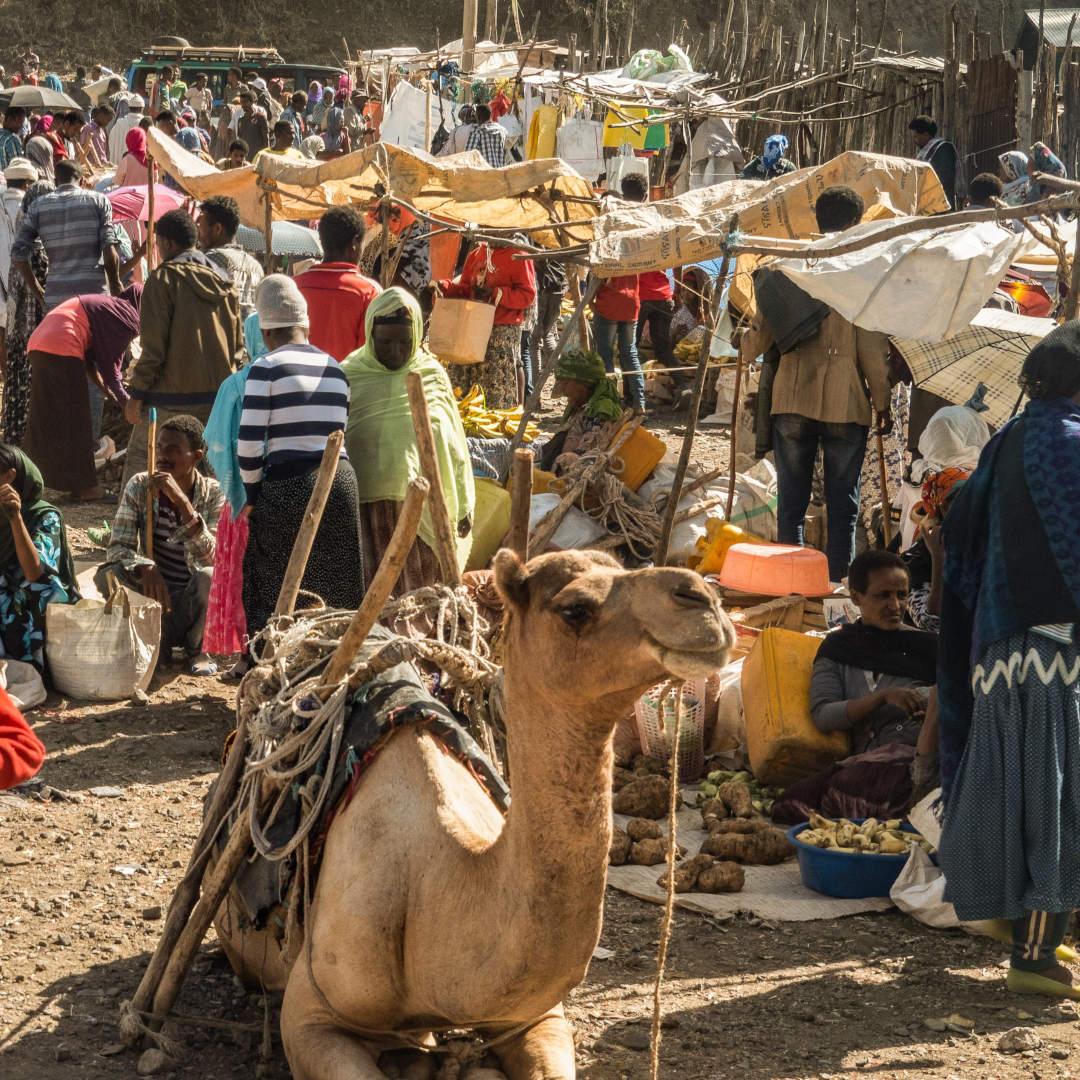 Custom-Travel-Planner-Network-5-Ethiopia-Northern-Market
