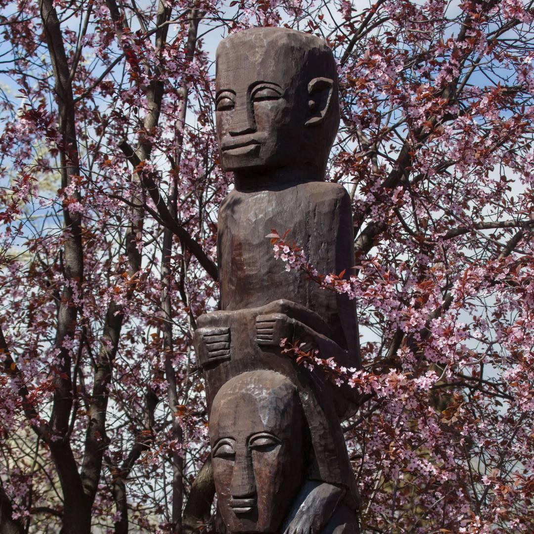 Custom-Travel-Planner-Network-6-Africa-Congo-Ground-Idols