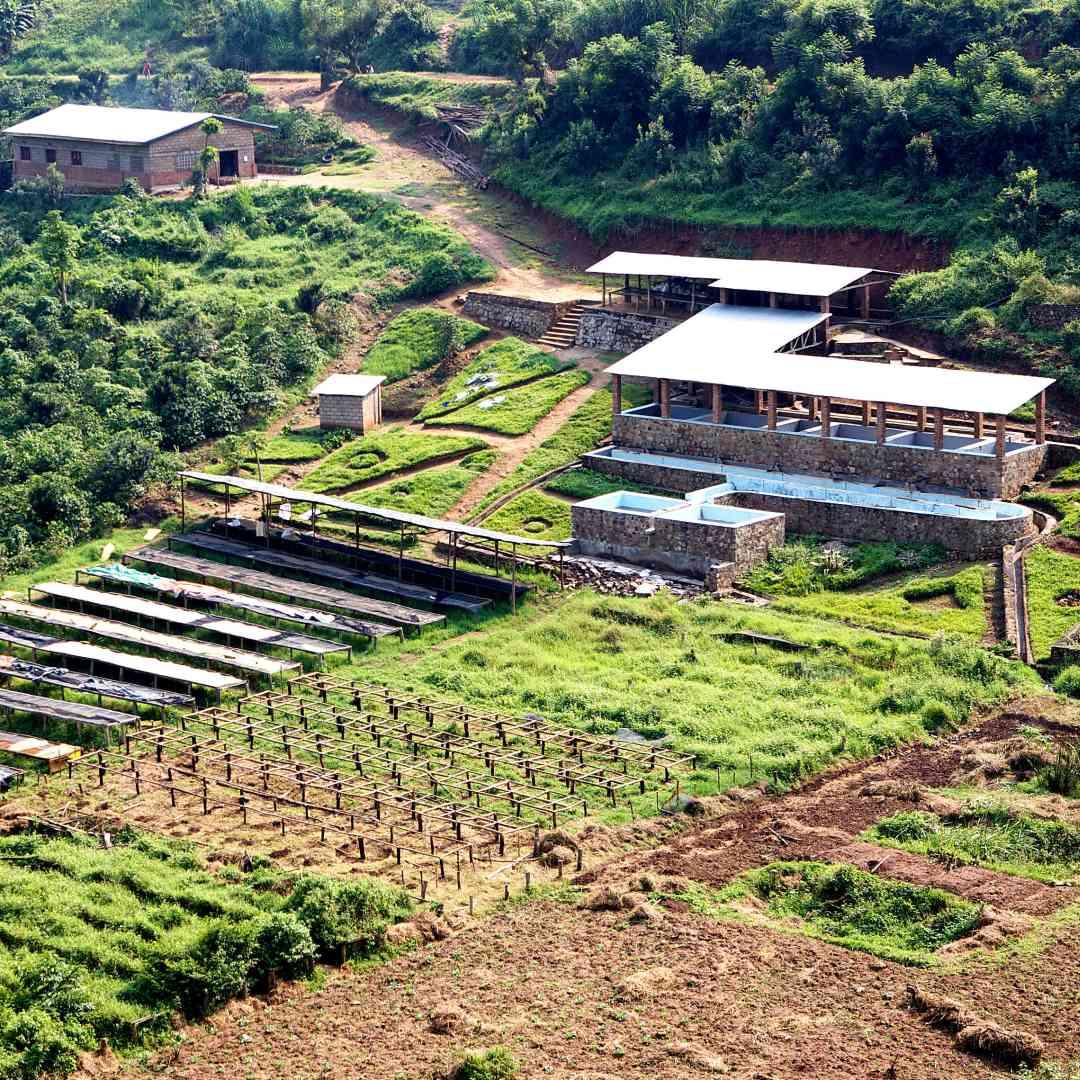 Custom-Travel-Planner-Network-8-SM-Rwanda-Coffee-Farm