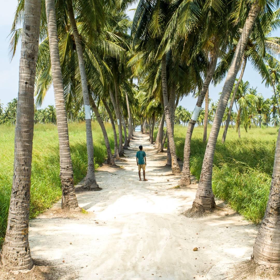 Custom-Travel-Planner-Network-9-Maldives-Vaau-Magu