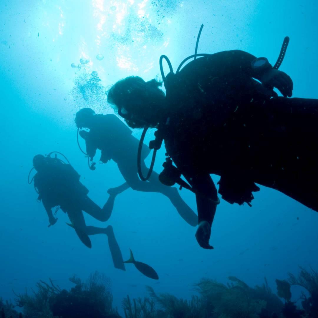 Custom-Travel-Planner-Network-1-SM-Belize-Dive-Placencia