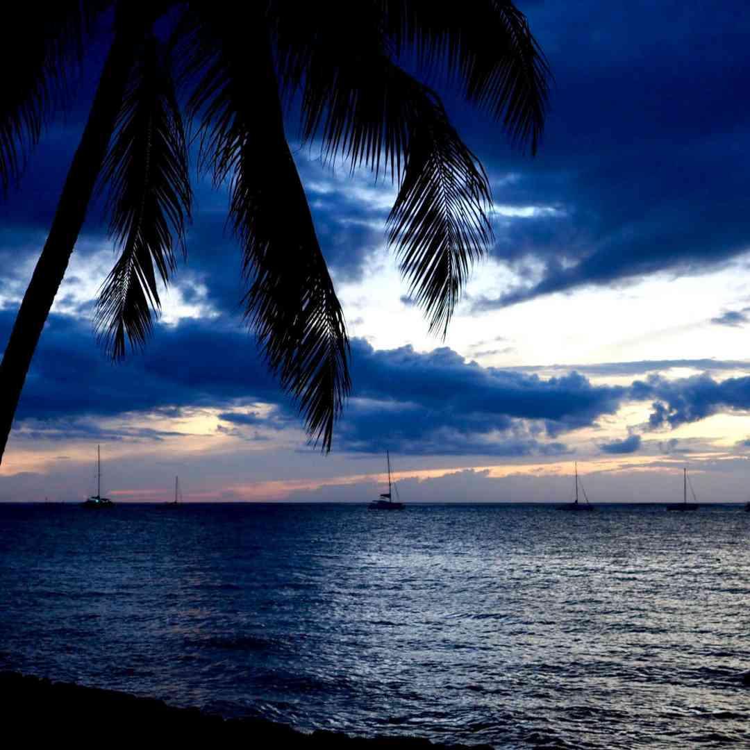 Custom-Travel-Planner-Network-1-SM-Tahiti-Sunset