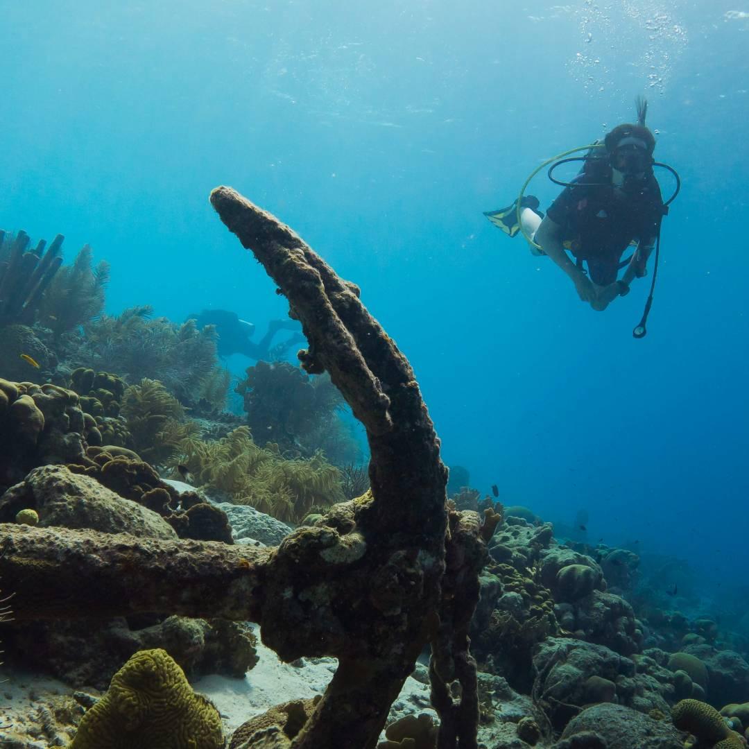 Custom-Travel-Planner-Network-2-Caribbean-Netherlands-Wreck-Dive