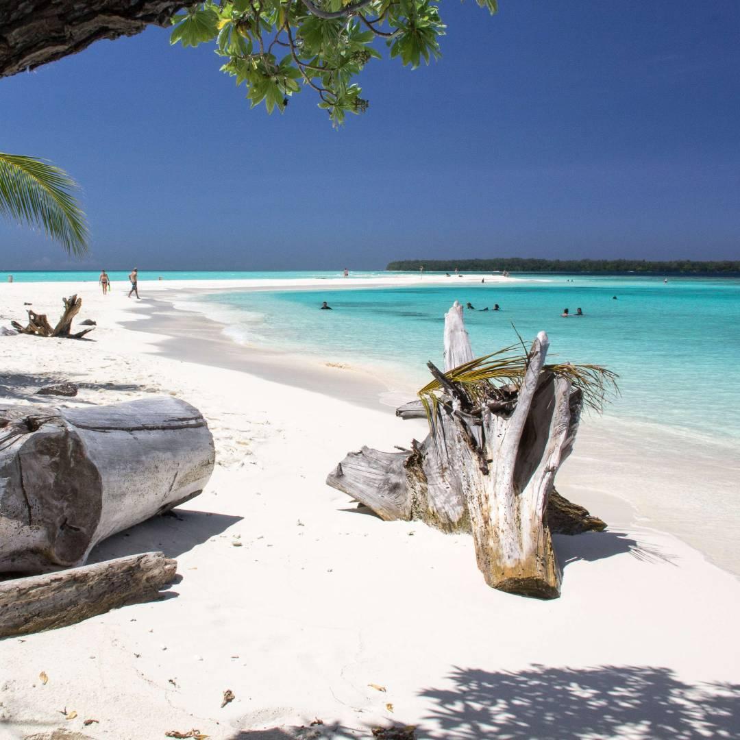 Custom-Travel-Planner-Network-3-Papua-Conflict-Island