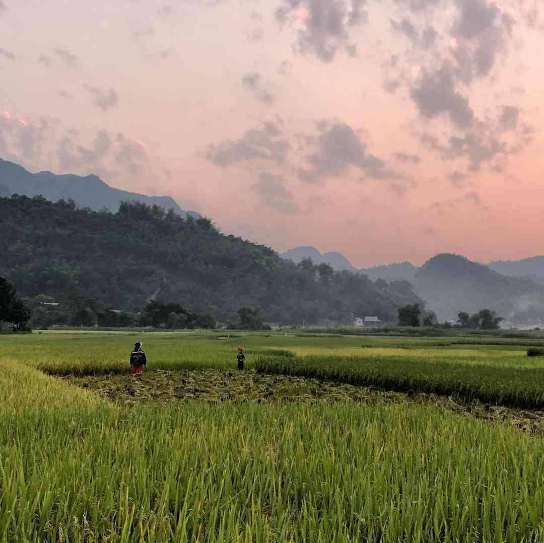 Custom-Travel-Planner-Network-3-SM-Vietnam-Mai-chau-district