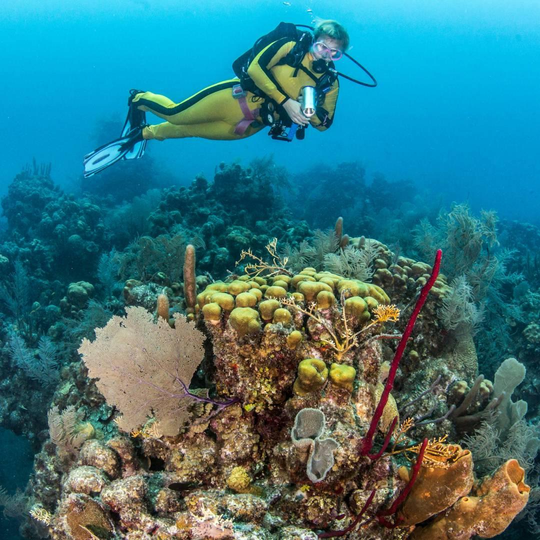 Custom-Travel-Planner-Network-4-SM-Belize-Blue-Hole