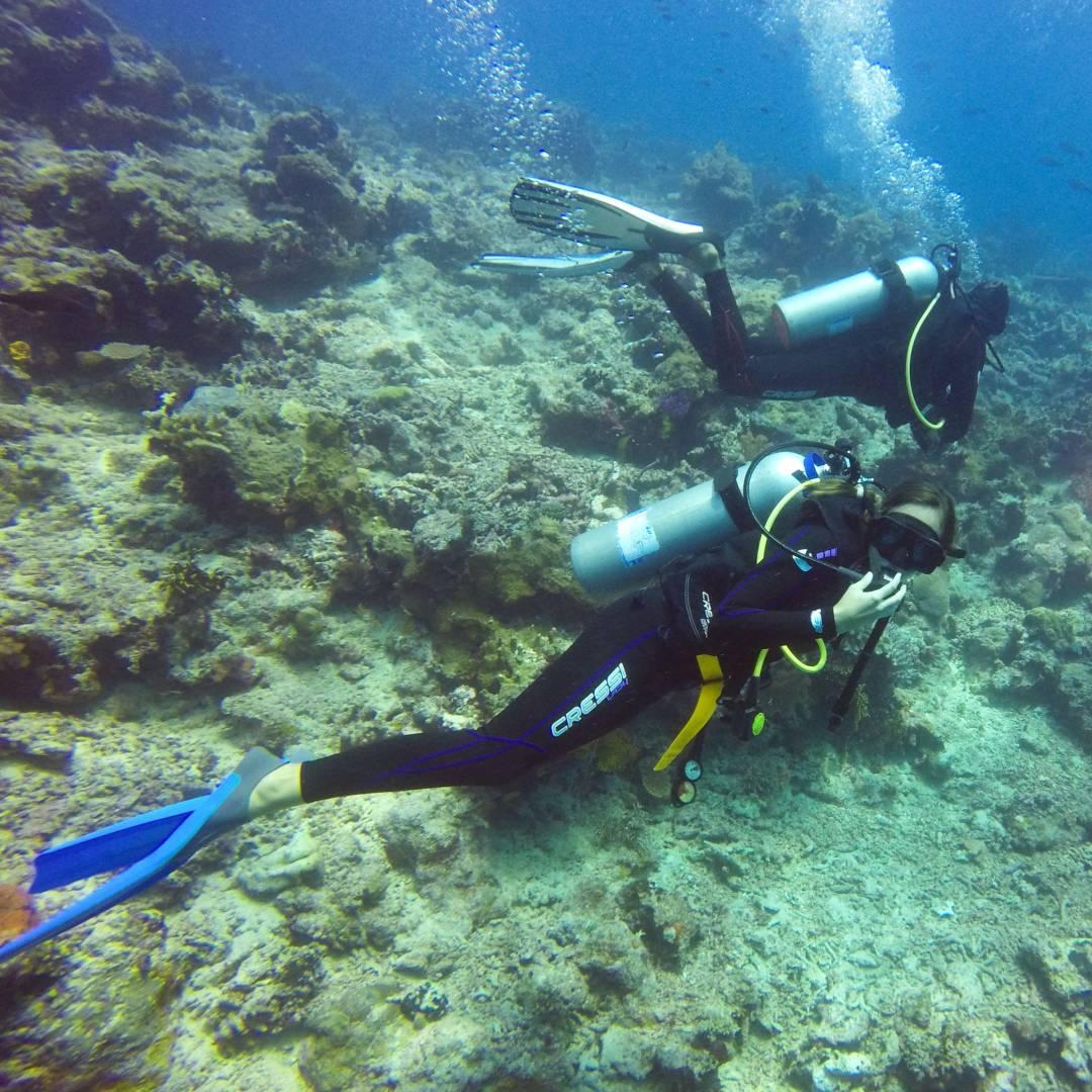 Custom-Travel-Planner-Network-5-Fiji-Dive-Taveuni