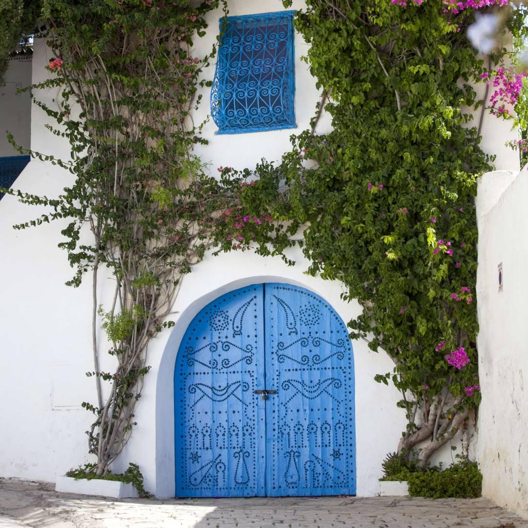 Custom-Travel-Planner-Network-5-SM-Tunisia-Sidi-Bou-Said