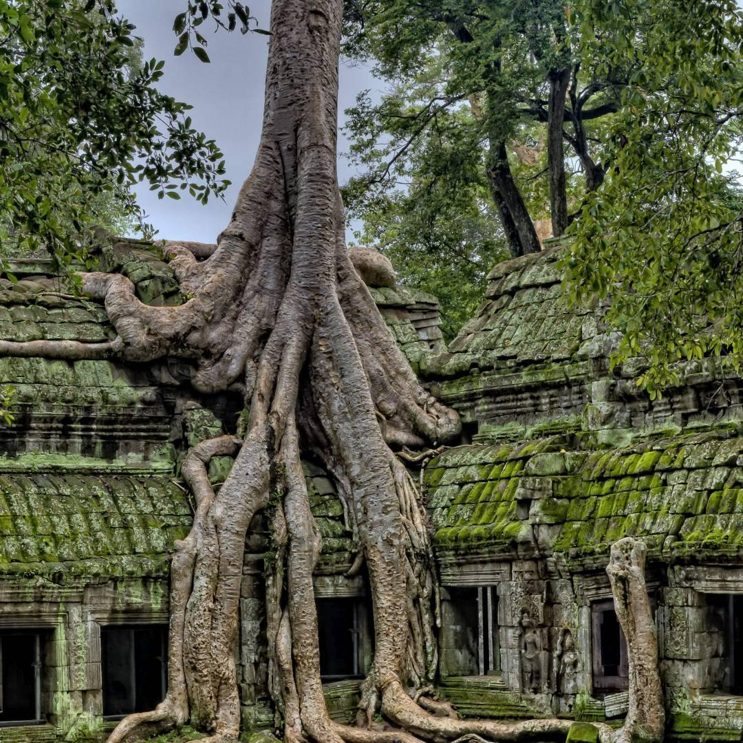 Custom-Travel-Planner-Network-6-SM-Cambodia-Angkor-Wat