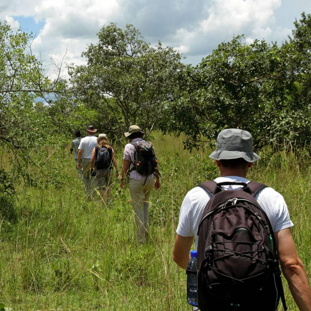 Custom-Travel-Planner-Network-7-SM-Uganda-Rhino-Safar