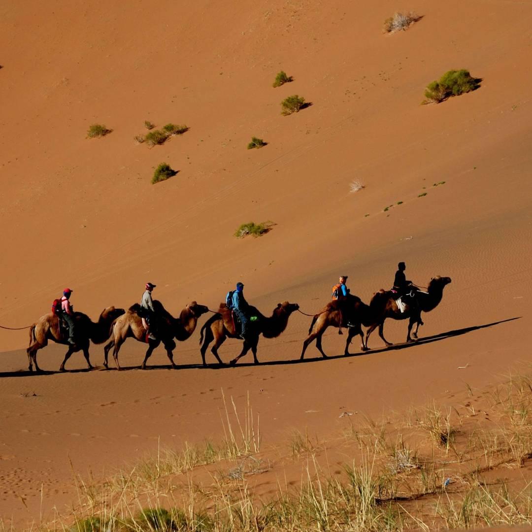 Custom-Travel-Planner-Network-8-Mongolia-Gobi