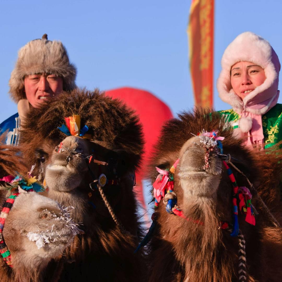 Custom-Travel-Planner-Network-9-Mongolia-Naadam-Camel-Racers