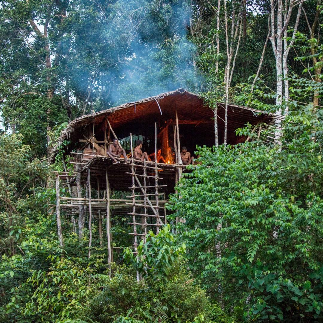 Custom-Travel-Planner-Network-9-Papua-Korowai-Tribe-Stilt-Houses-