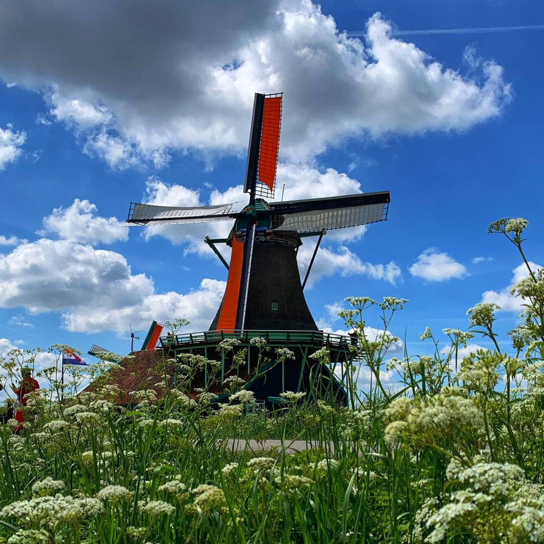 Custom-Travel-Planner-Network-1-Netherlands-Zaandam-Windmill