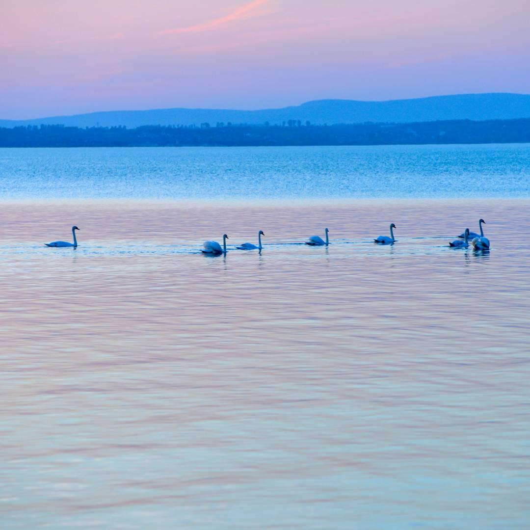 Custom-Travel-Planner-Network-2-SM-Hungary-Lake-Balaton