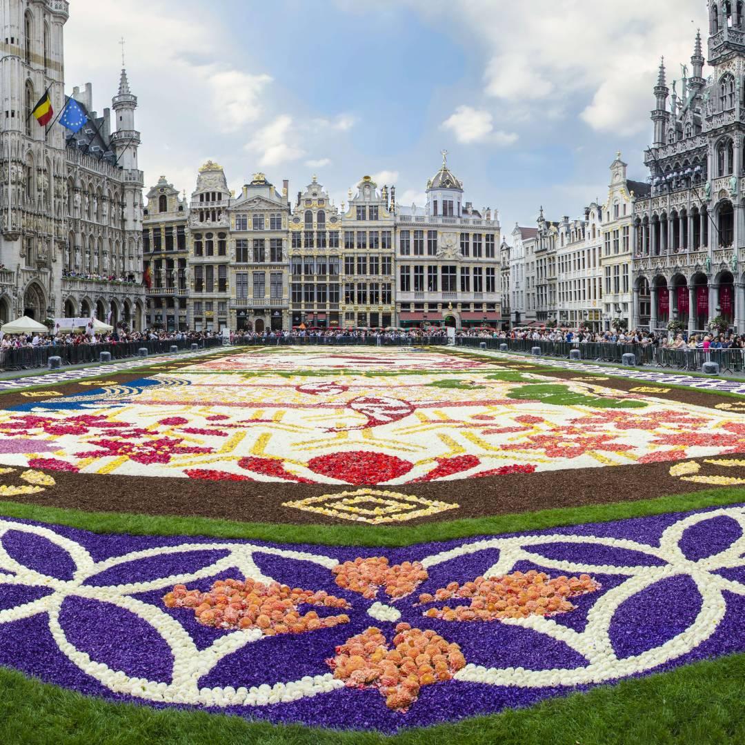 Custom-Travel-Planner-Network-4-SM-Belgium-Carpet-of-Flowers