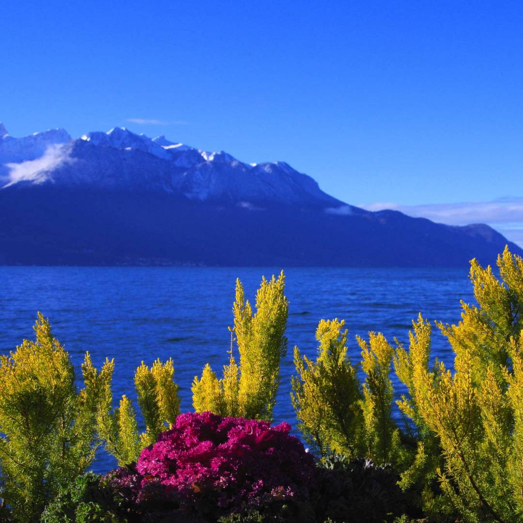 Custom-Travel-Planner-Network-6-SM-Switzerland-Lake-Geneva