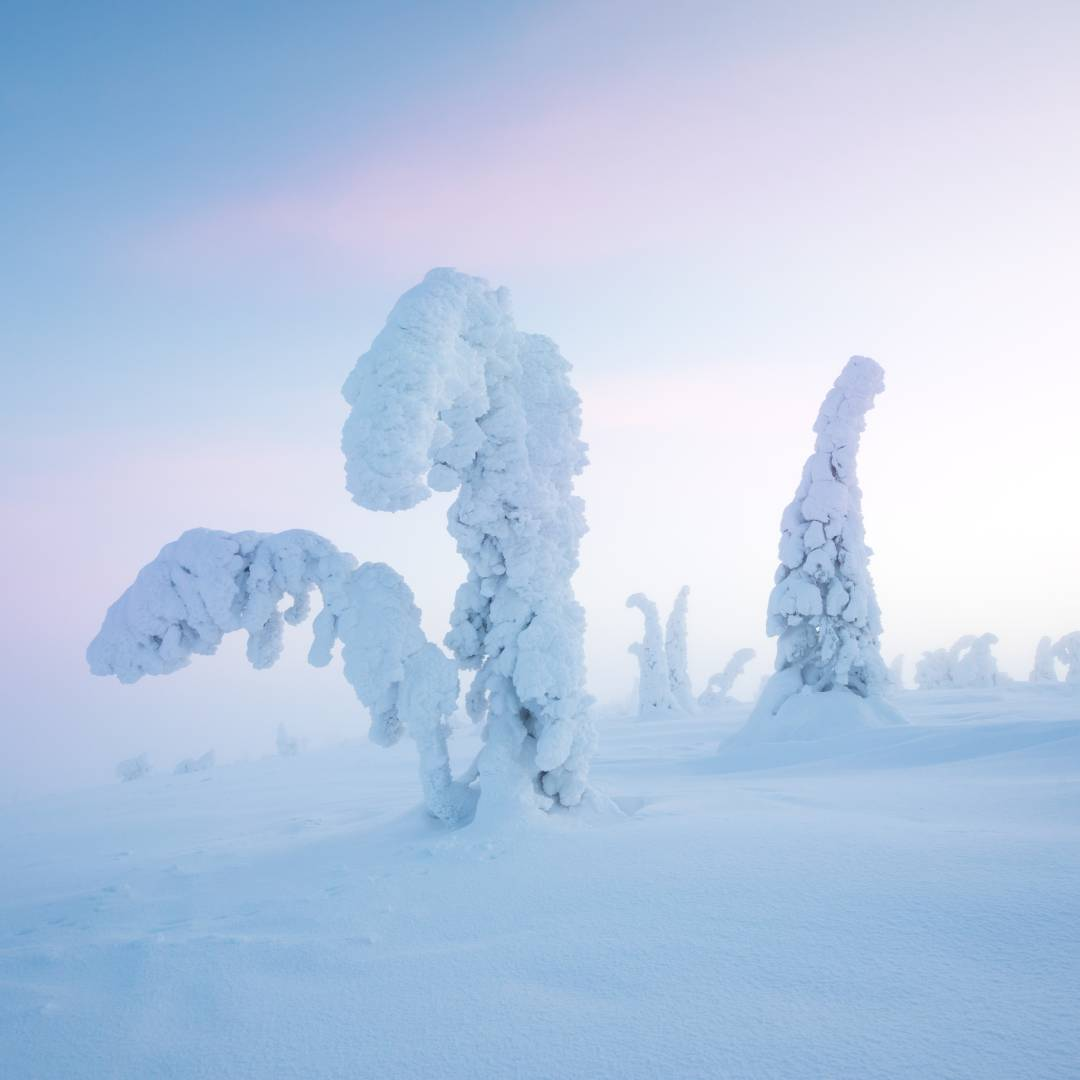 Custom-Travel-Planner-Network-8-SM-Finland-Riisitunturi