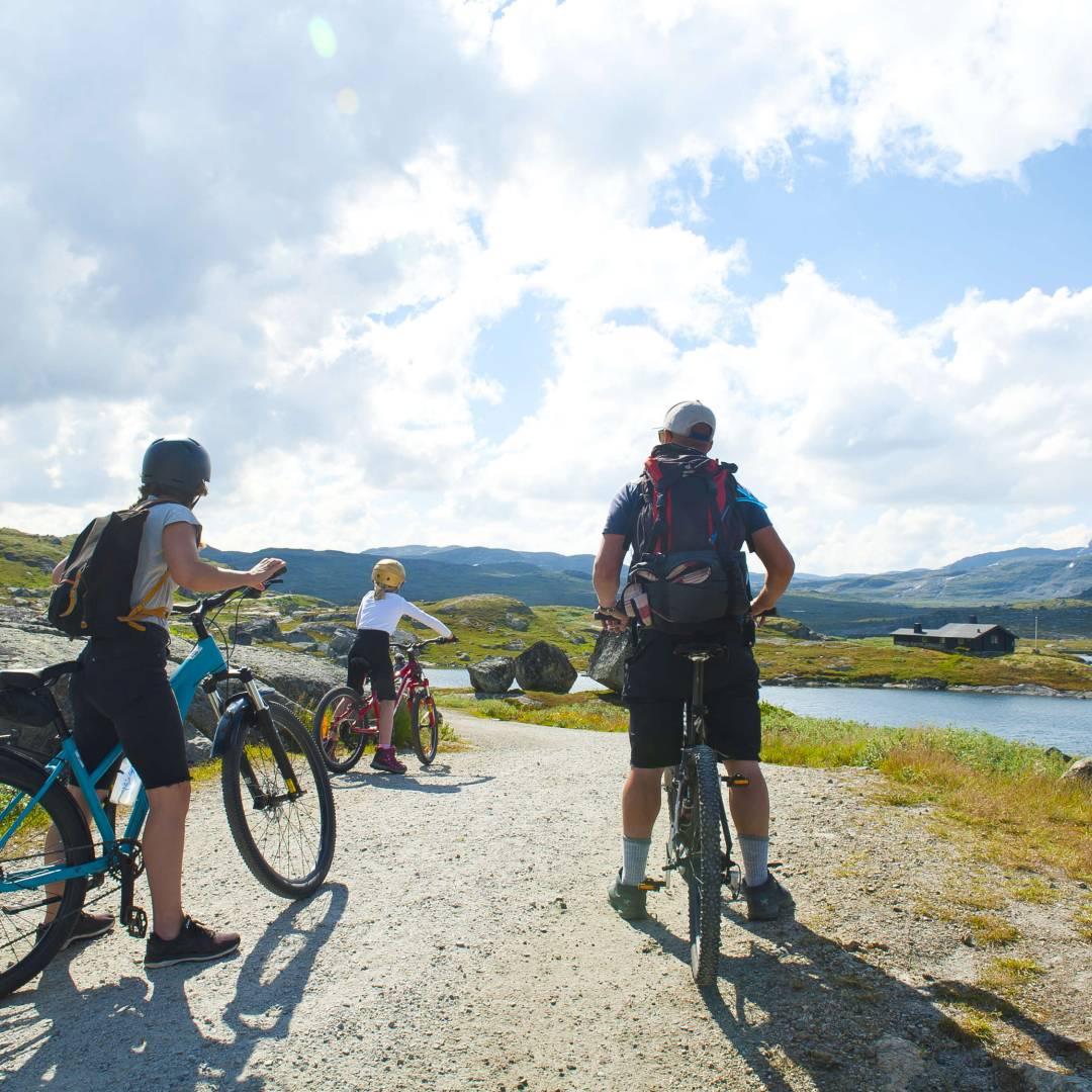 Custom-Travel-Planner-Network-9-Norway-Finse-Bicycle-Ride