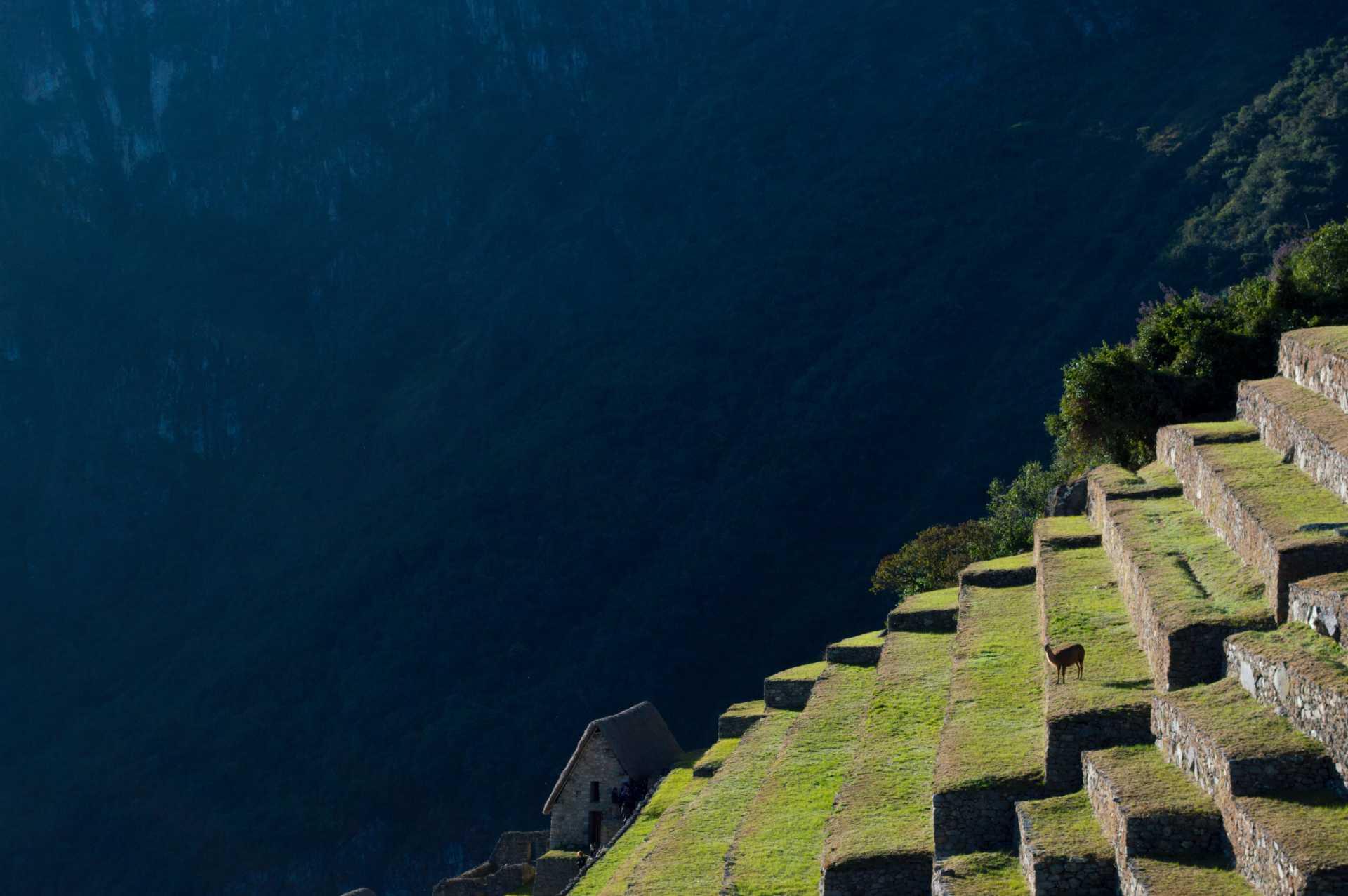 Custom-Travel-Planner-Network-Beautiful-Peru-Machu-Picchu-CLose-Up