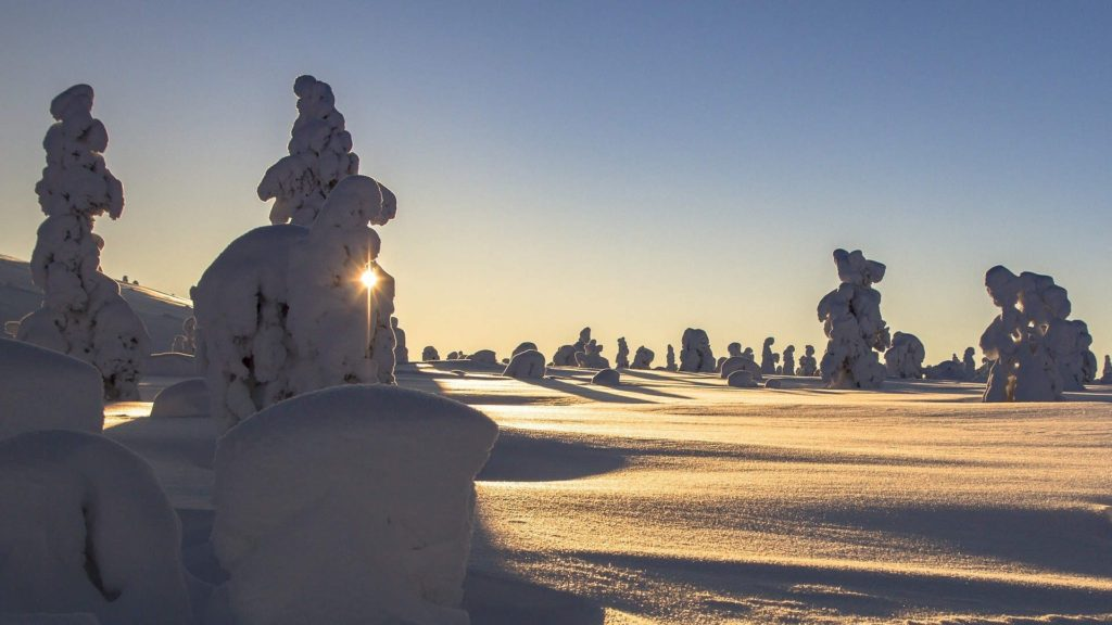 Custom-Travel-Planner-Network-Finland-lapland